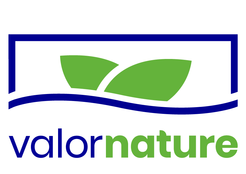 Valor Nature Logo